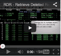 Retrieve Deleted Records with RDR